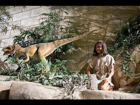 A Trip To The Creation Museum Youtube