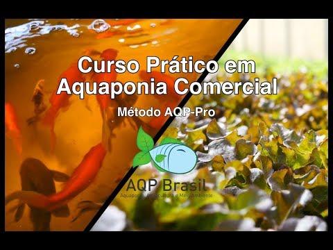 AQP Brasil - Curso em Aquaponia