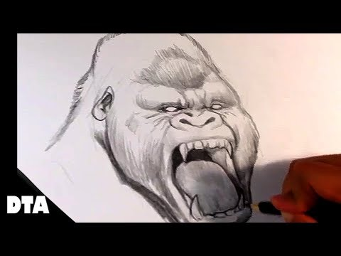 How to Draw a Gorilla - Yelling