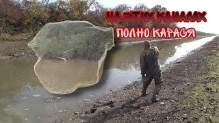 Рыбу некуда ложить!!! Рыбалка КАСТИНГОВОЙ сетью.Затарились на весь год!!!
