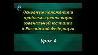 Урок 4. Структура государственных органов по делам несовершеннолетних