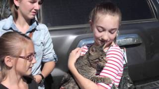Humane Society of Utah Adoptions