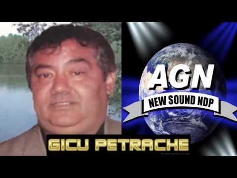 GICU PETRACHE - SA VINA TOTI FRATII MEI (COLAJ) OFFICIAL AUDIO