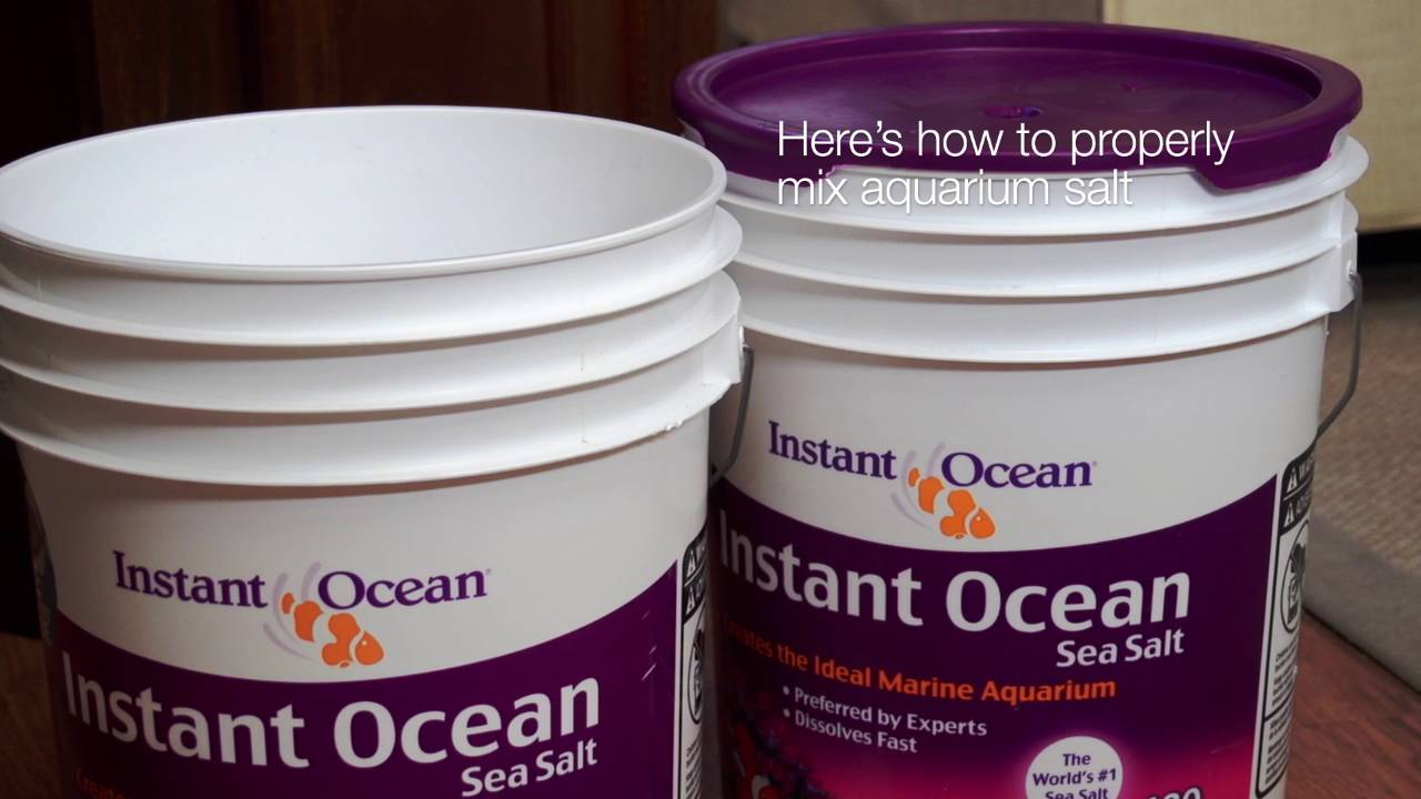 using and mixing instant ocean salts youtube