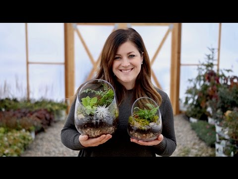 How To Make A Terrarium (Full Version) // Garden Answer