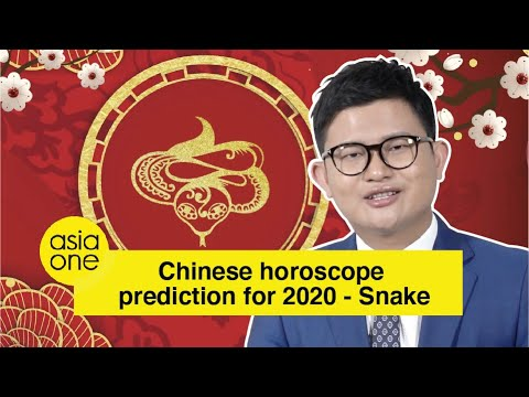 2020 Zodiac Animal Forecast By Master David Snake Youtube Chinese zodiac signs characteristics and personality traits for each zodiac sign, astrology 2021 and chinese horoscope 2021 for the year of ox. 2020 zodiac animal forecast by master david snake