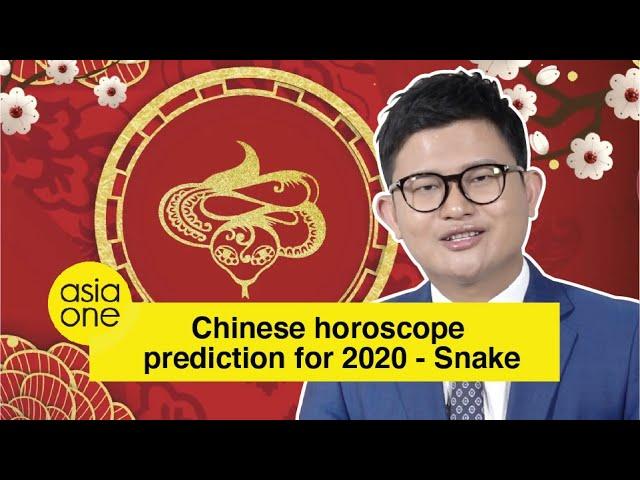 2020 Zodiac Animal Forecast By Master David Snake Youtube Search for master rao ! 2020 zodiac animal forecast by master