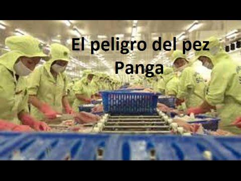 ¿Consumes Pez  Panga? Cuidado !!