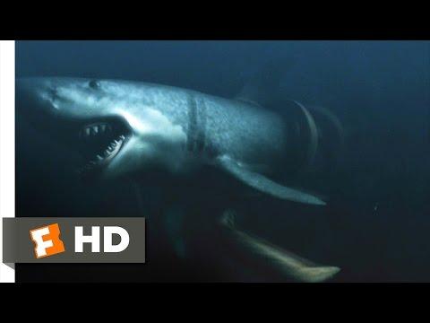Mega Shark vs. Giant Octopus (9/10) Movie CLIP - You