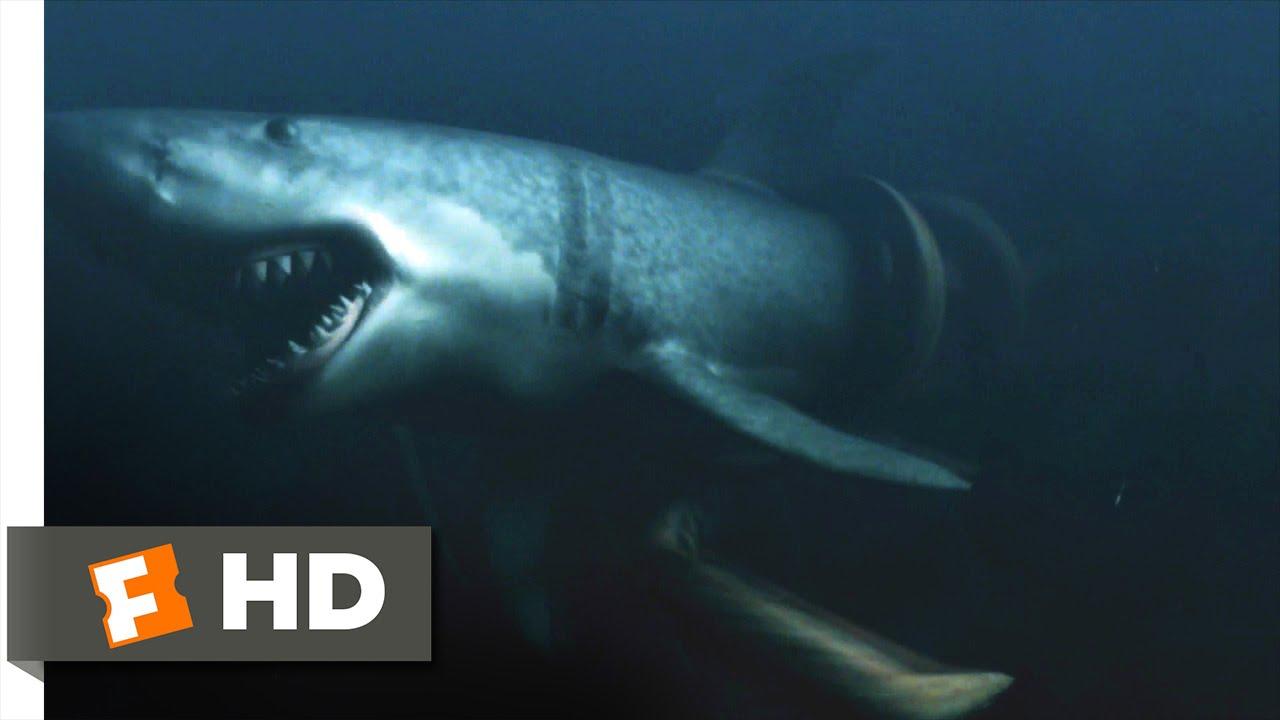 mega shark vs giant octopus 910 movie clip youre