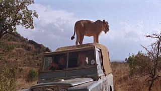 La Leona de Dos Mundos ( 1966 )