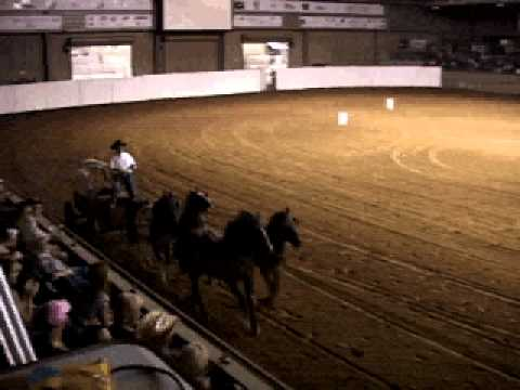 REICHERT FUN TIMES  chuck wagon.avi
