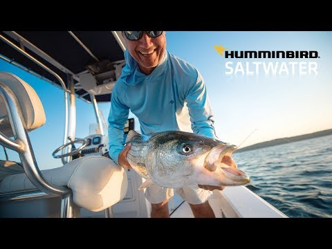 Saltwater Fishing Is Easier Than Ever With Humminbird