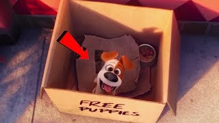 The Secret Life of Pets (2016) - Where does Max come from???