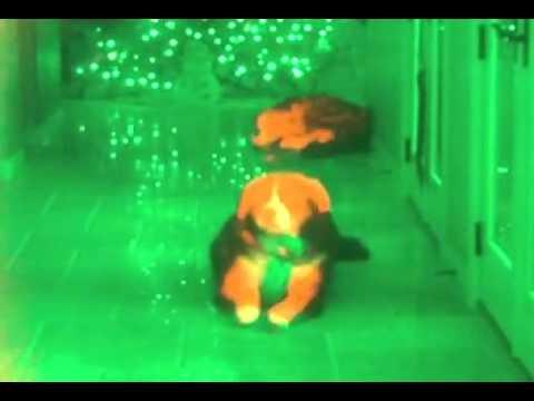 Sensor Fusion Of Night Vision Thermal Imaging Flir Swir