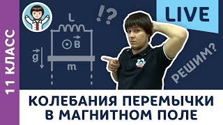 Колебания перемычки в магнитном поле LIVE | 11 класс | Олимпиадная физика c F