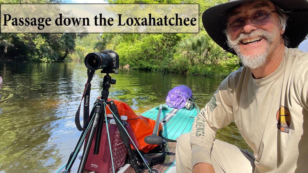 Passage down the Loxahatchee River