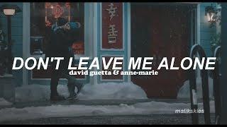 David Guetta ft. Anne-Marie - Don't Leave Me Alone (Traducida al español)