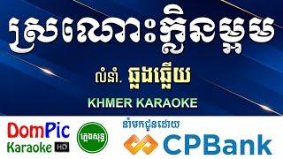 ស្រណោះក្លិនម្អម ឆ្លងឆ្លើយ ភ្លេងសុទ្ធ - Sronos Klen Maom Pleng Sot - DomPic Karaoke
