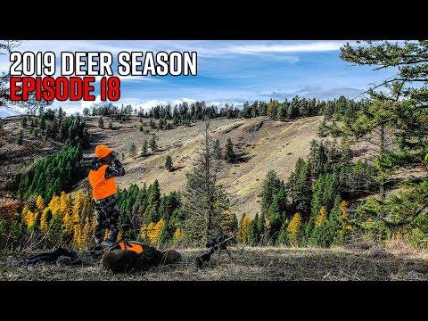 The Biggest Buck I've Ever Seen - Washington Public Land Giant | 2019 Hunting Season EP.18