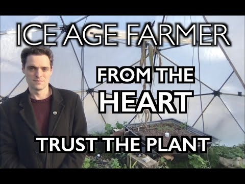 Ice Age Farmer from the Heart: Trust the PLANT - Solutions
