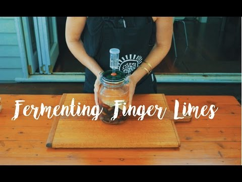 How To Ferment Finger Limes