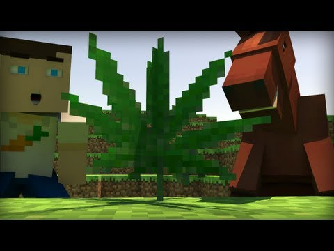Drugs in Minecraft! (Animation)