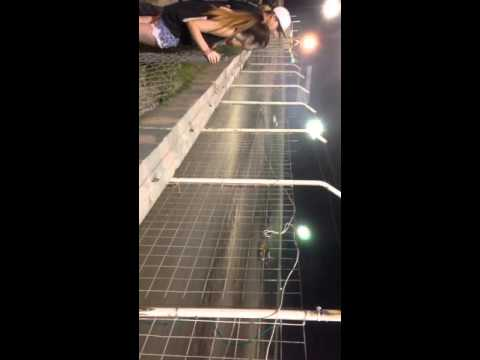 2015 rattlesnake raceway