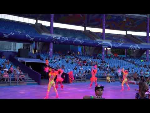 """Shine Like Stars"" Club Sea Glow Electric Ocean at Sea World Orlando"