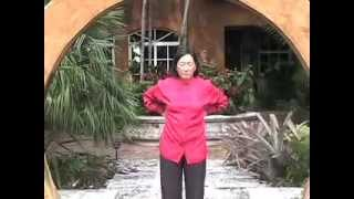 LIFT QI UP (Spanish): Wisdom Qigong, Level I