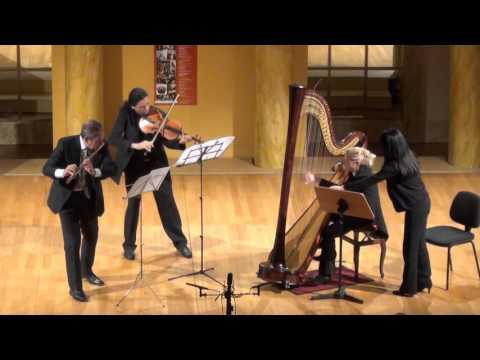 Ravel - Sonatina in Trio, Animé