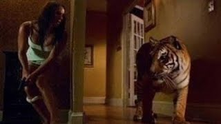 Top 10 best suspense thriller movies (2000 - 2018)  all time favourite