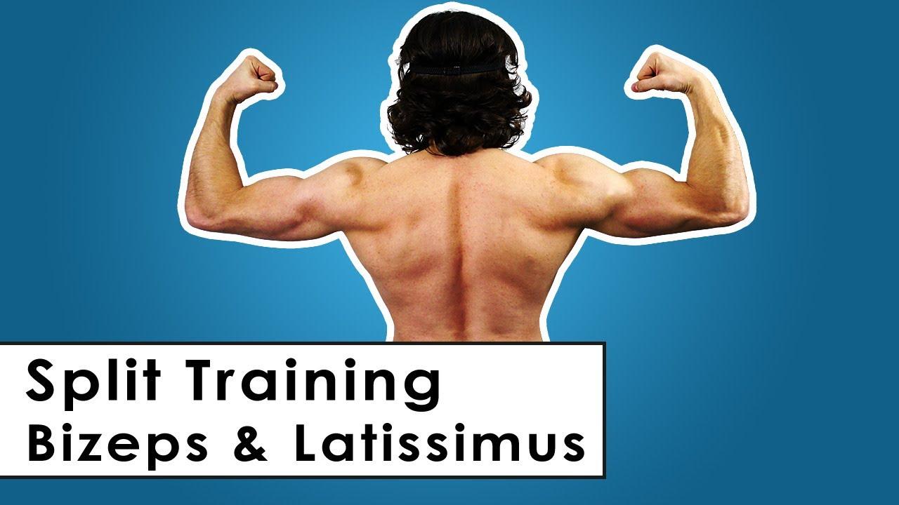 Bizeps & Latissimus Split Trainingsplan für zu Hause