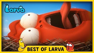 LARVA | BEST OF LARVA | Funny Cartoons for Kids | Cartoons For Children | LARVA 2017 WEEK 21