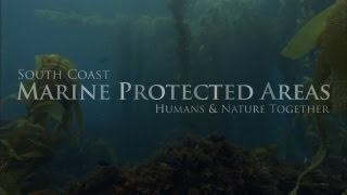 South Coast Marine Protected Areas: Humans and Nature Together