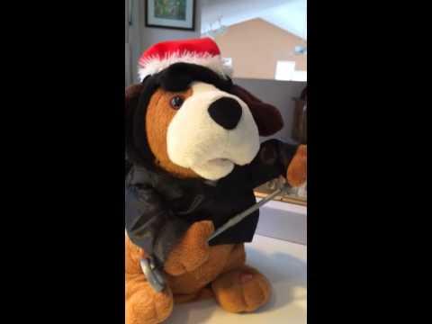 Elvis the hound dog sings