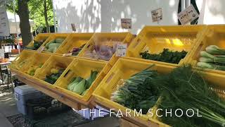 Download Video VIDEO: 2018 Watertown Farmers Market MP3 3GP MP4