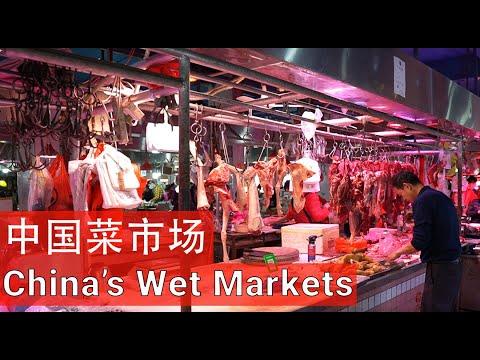 "Inside a Real Chinese Wet Market // (含中文字幕) //一个真实的中国""湿货""市场"