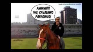 Botafogo Cavalo Paraguaio
