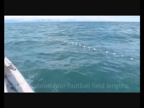 Salmon drift net fishing in alaska youtube for Drift net fishing