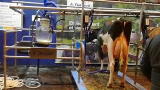 La traite du matin au SIA2018 sur France Bleu Lorraine