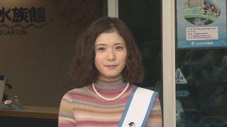 東京都内のしながわ水族館で、女優の松岡茉優さんが22日、同水族館の...