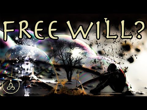 Does Free Will Exist? [FREE WILL VS DETERMINISM]