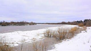Видео отчёт! Река вскрылась, браконьеры проснулись... Скоро летняя рыбалка!