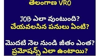 VRO job profile, salaries, perks and promotions || VRO job profile