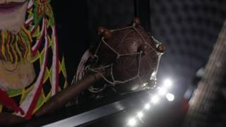 Rastenie Mudrosti - #Black Star Kali / Растение Мудрости #ЧёрнаяЗвездаКали