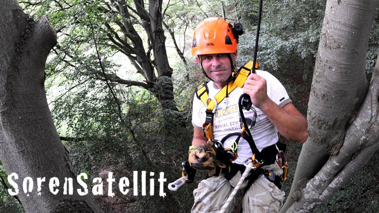 27a3010c17b Tree Climbing - Single rope technique - SRT - Petzl Grigri 2 - Træklatring  - YouTube