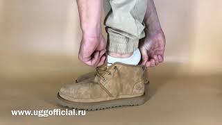 Обзор мужских ботинок угг UGG Neumel Chestnut. Как смотрятся на ногах.