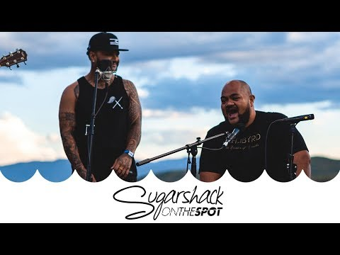 Common Kings - Lost In Paradise | Sugarshack On The Spot