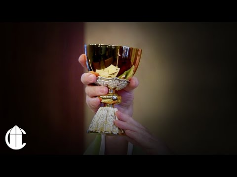 Catholic Mass: 11/20/20   Friday of the Thirty-Third Week in Ordinary Time